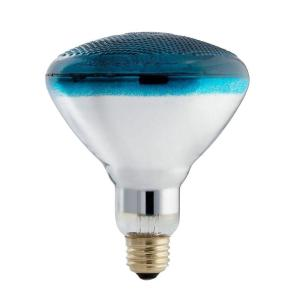 philips-incandescent-light-bulbs-385328-64_1000