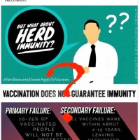 Dr. Bob Puts the Nail in the Coffin of the Herd Immunity Argument – VAXOPEDIA