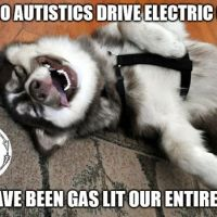 As Seen On Facebook | Meme: Why Do Autistics Drive Electric Cars? | Fierce Autie